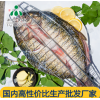 供应安徽三珍食品冷冻开背草鱼 烤鱼食材直销